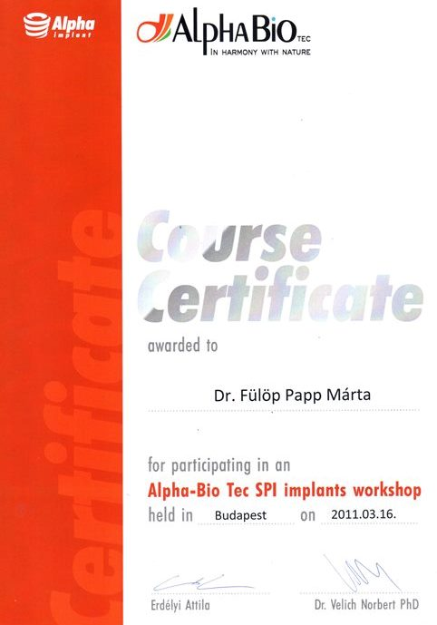 Alpha Bio Tec Implants workshop